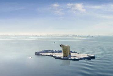 le-rechauffement-climatique